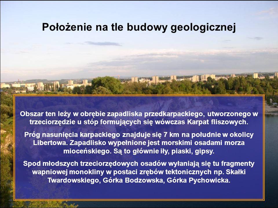 Położenie na tle budowy geologicznej