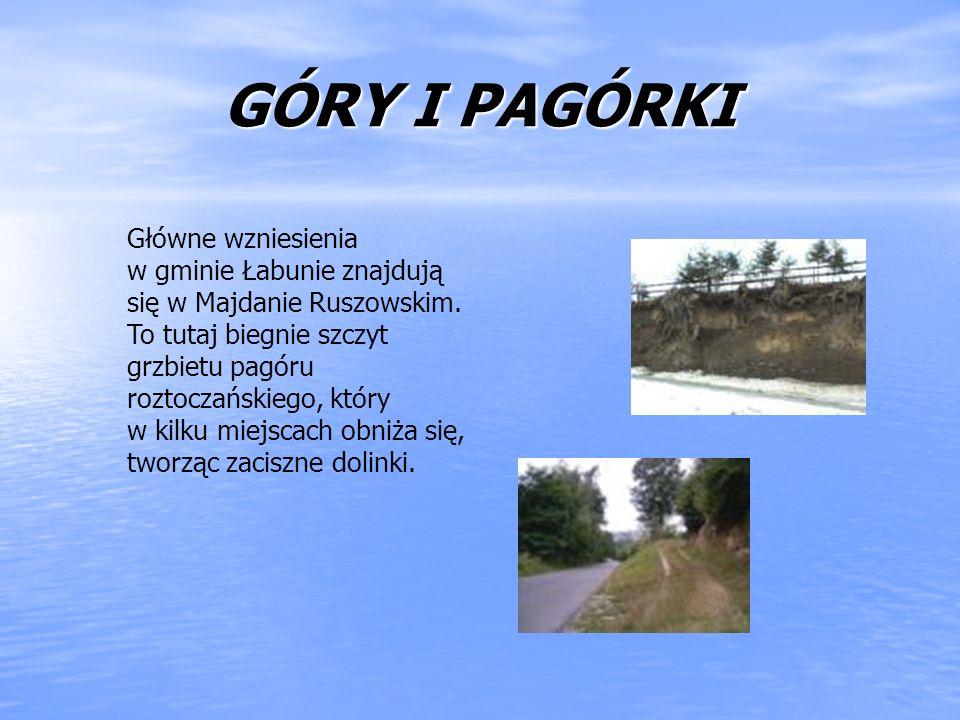 GÓRY I PAGÓRKI