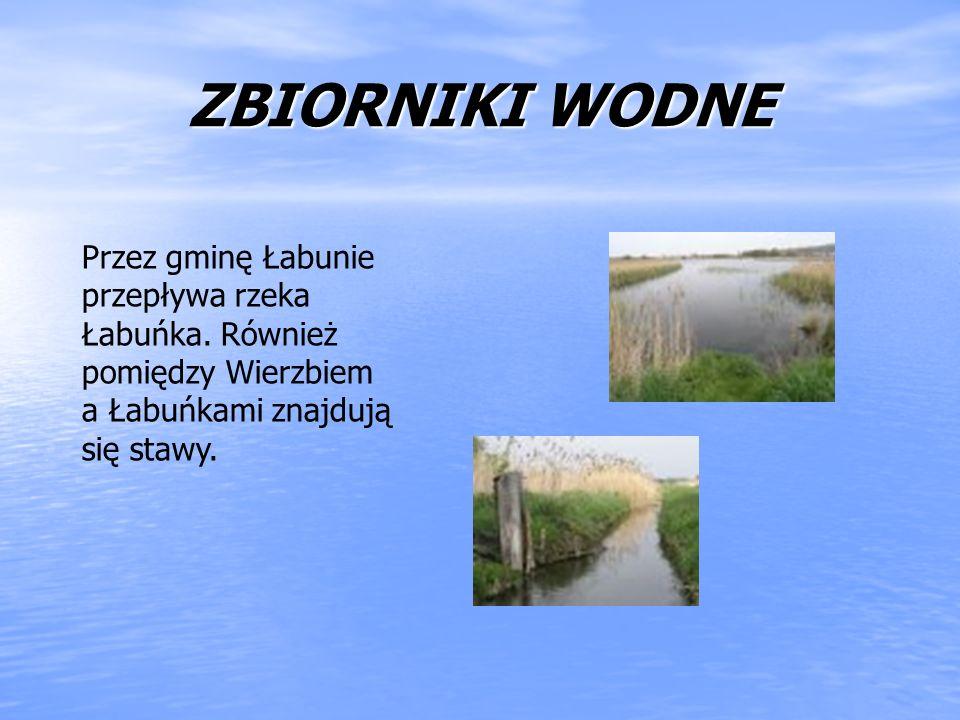 ZBIORNIKI WODNEPrzez gminę Łabunie przepływa rzeka Łabuńka.