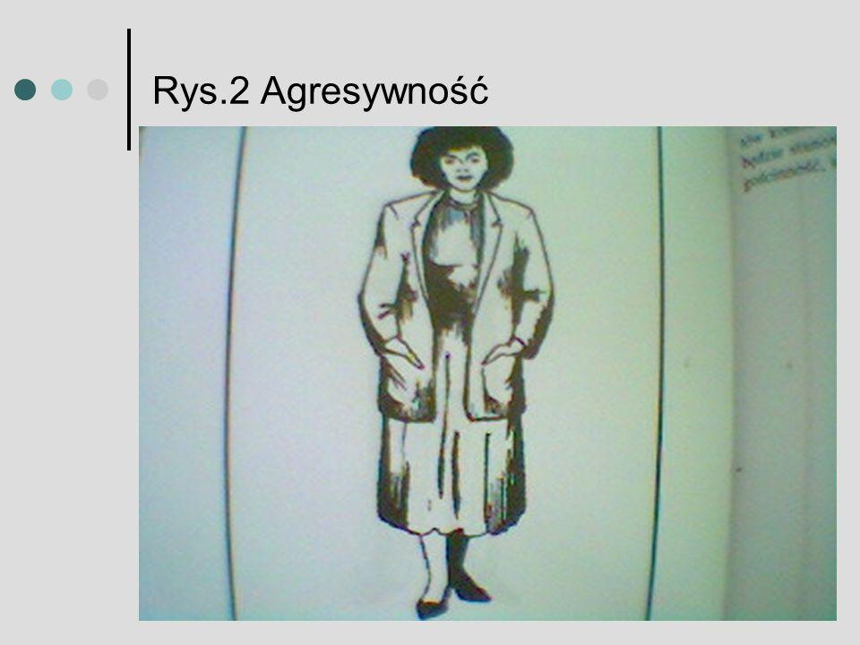 Rys.2 Agresywność
