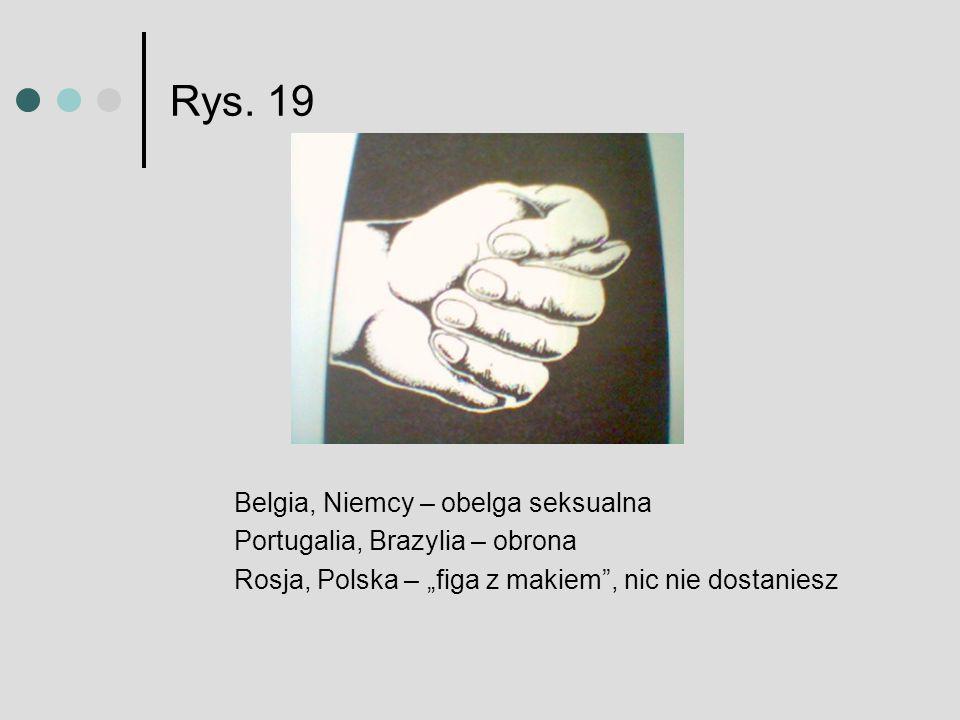 Rys. 19 Belgia, Niemcy – obelga seksualna