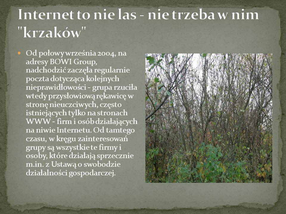 Internet to nie las - nie trzeba w nim krzaków