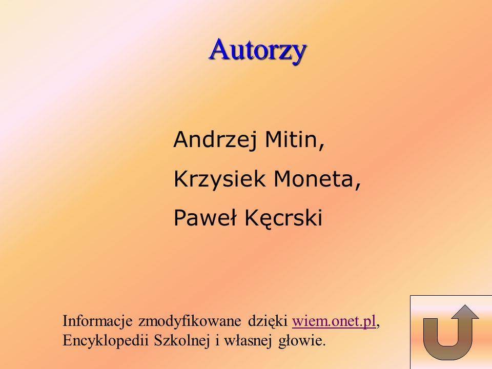 Autorzy Andrzej Mitin, Krzysiek Moneta, Paweł Kęcrski