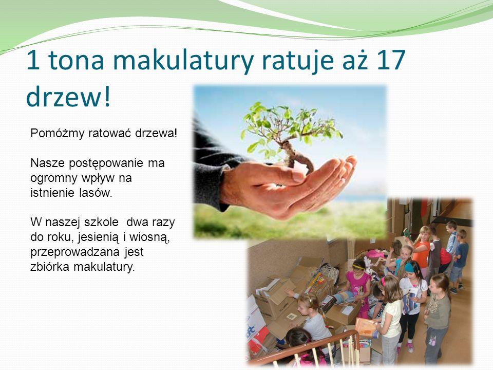 1 tona makulatury ratuje aż 17 drzew!