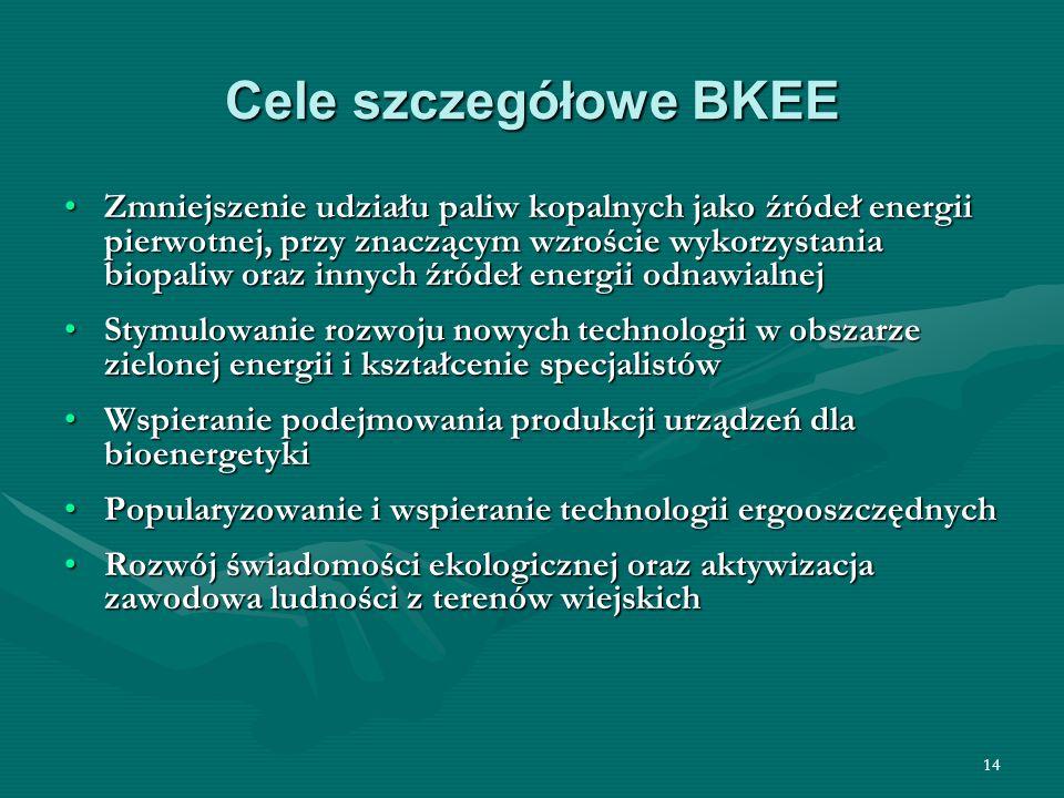 Cele szczegółowe BKEE