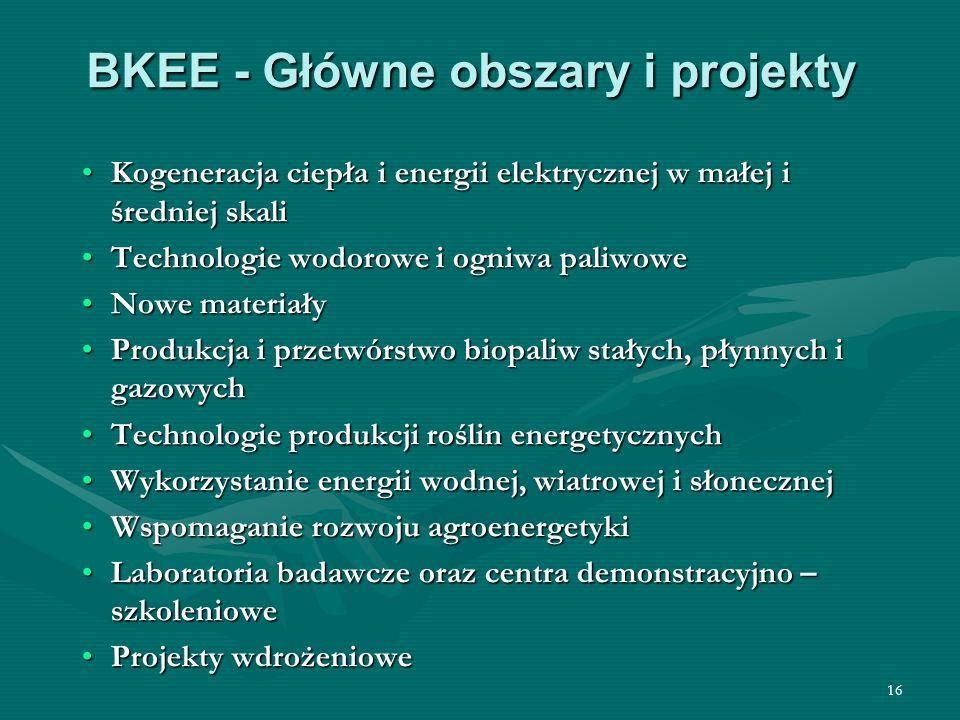 BKEE - Główne obszary i projekty