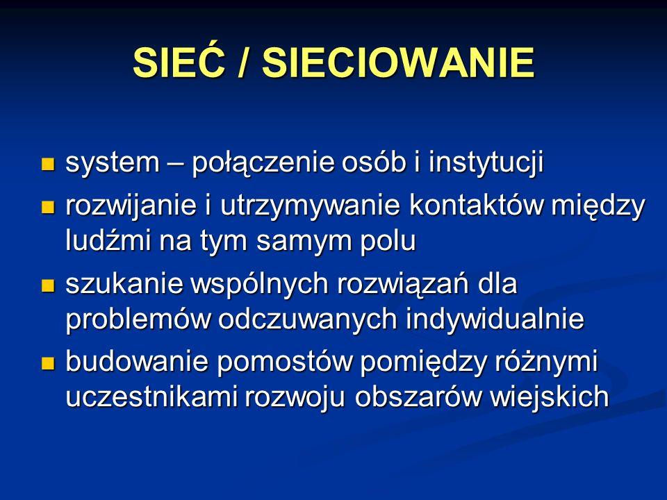 SIEĆ / SIECIOWANIE system – połączenie osób i instytucji