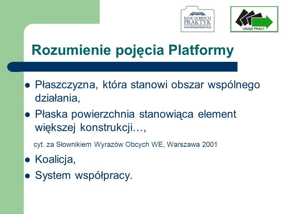 Rozumienie pojęcia Platformy