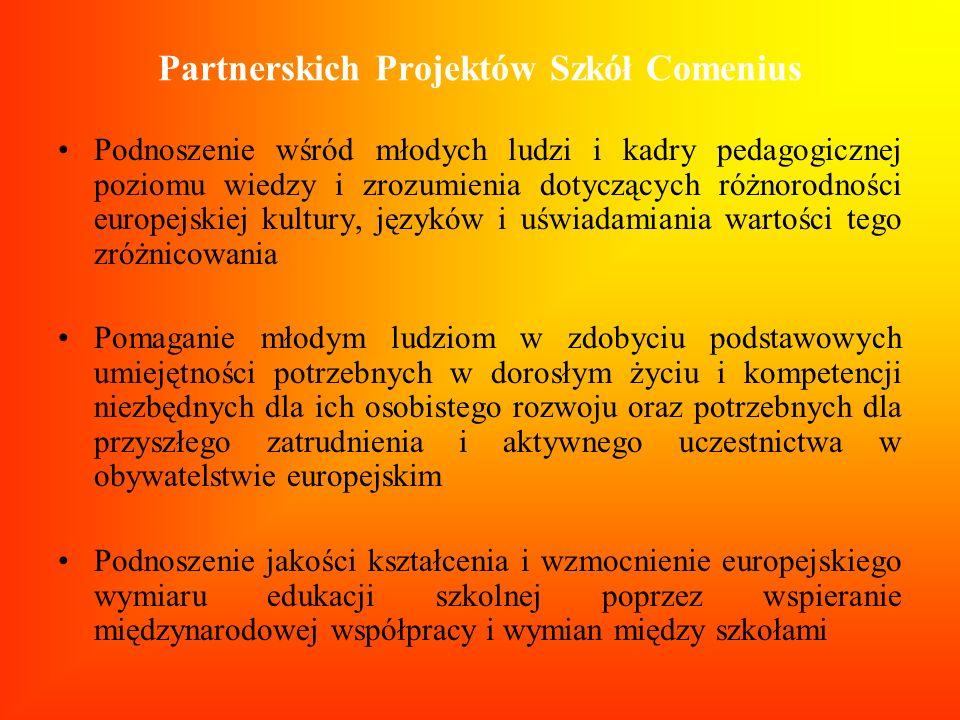 Partnerskich Projektów Szkół Comenius