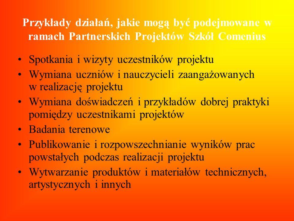 Przykłady działań, jakie mogą być podejmowane w ramach Partnerskich Projektów Szkół Comenius