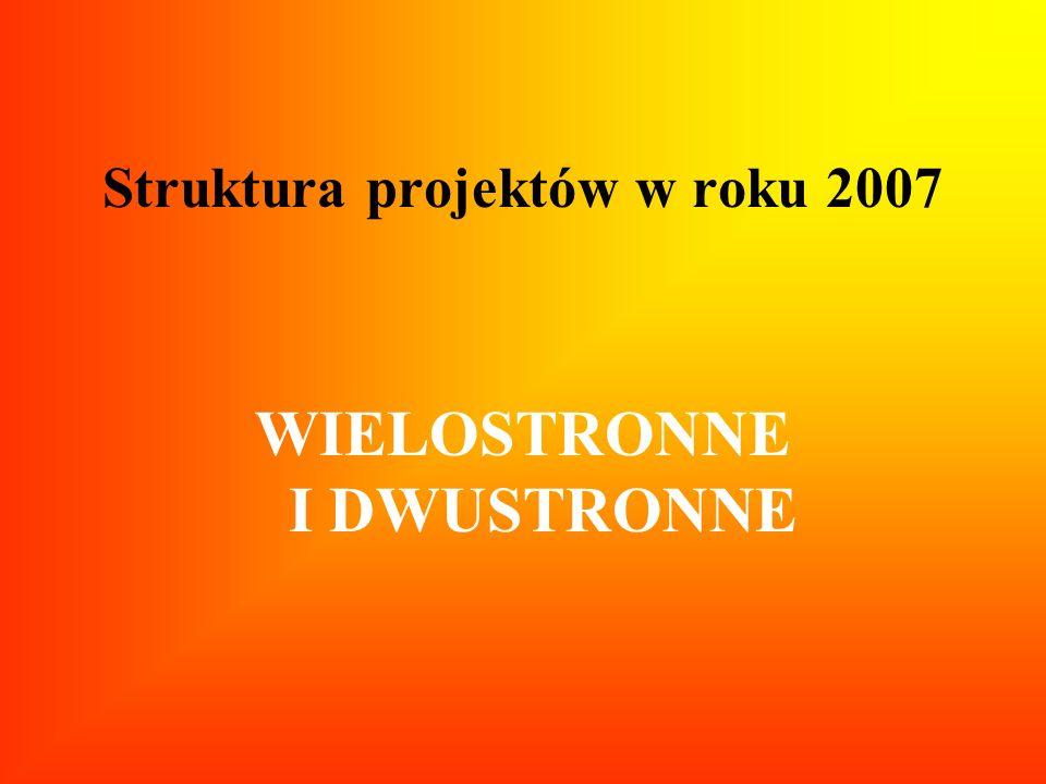 Struktura projektów w roku 2007