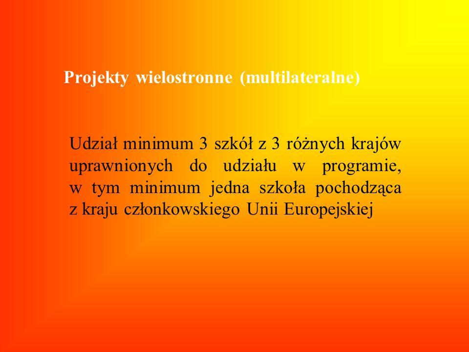 Projekty wielostronne (multilateralne)