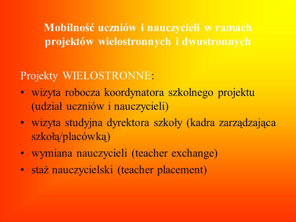 Mobilność uczniów i nauczycieli w ramach projektów wielostronnych i dwustronnych