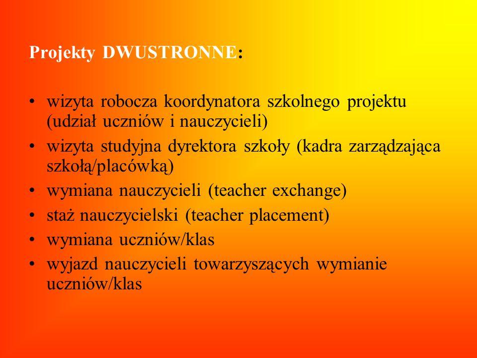 Projekty DWUSTRONNE: wizyta robocza koordynatora szkolnego projektu (udział uczniów i nauczycieli)