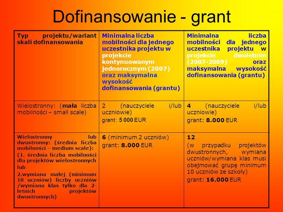 Dofinansowanie - grant