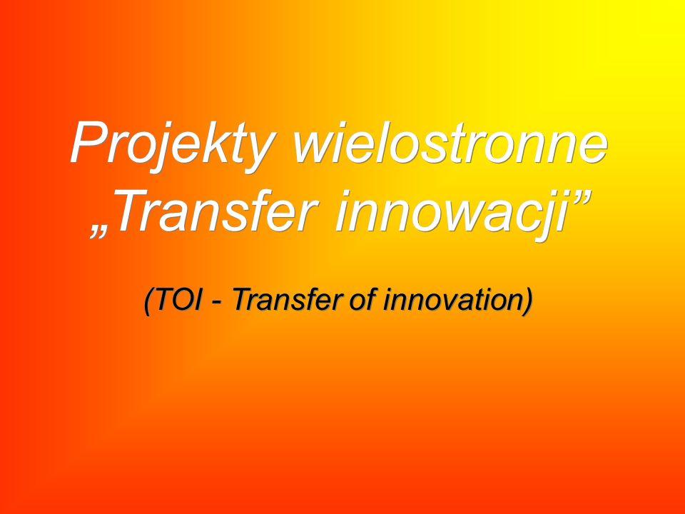 "Projekty wielostronne ""Transfer innowacji (TOI - Transfer of innovation)"