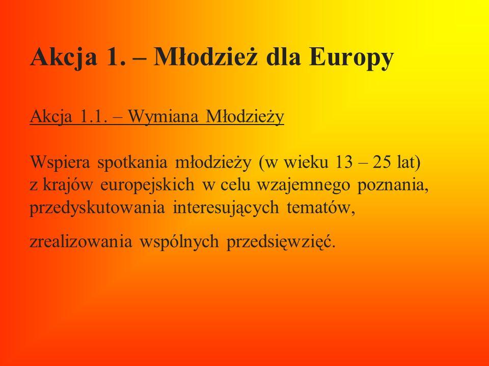 Akcja 1. – Młodzież dla Europy Akcja 1. 1