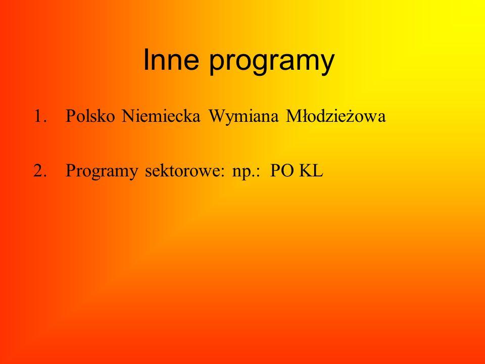 Inne programy Polsko Niemiecka Wymiana Młodzieżowa