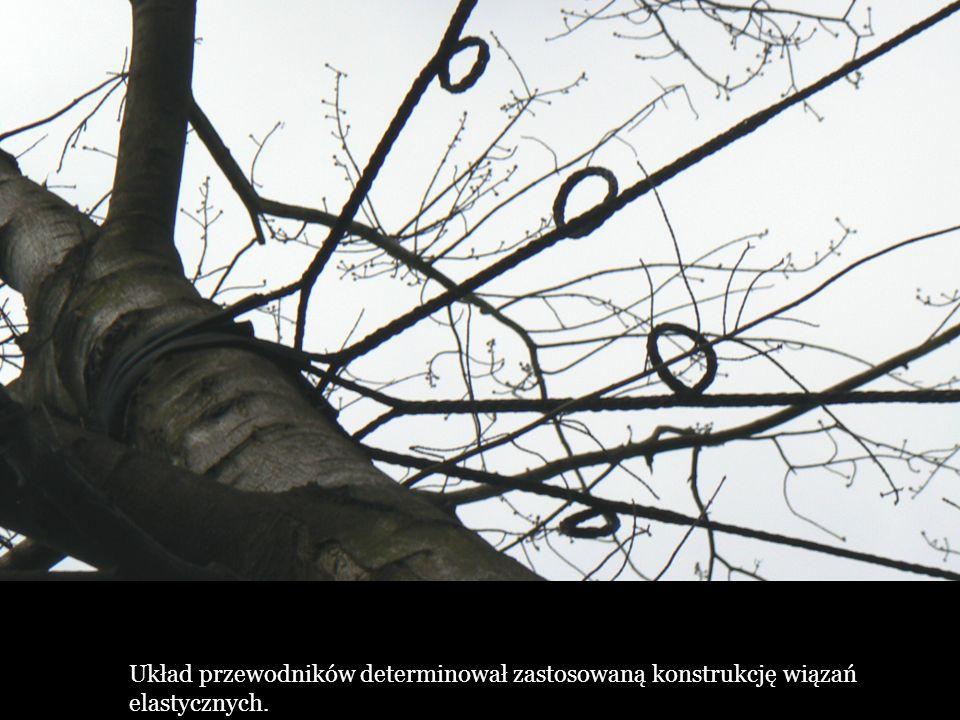 Układ przewodników determinował zastosowaną konstrukcję wiązań elastycznych.