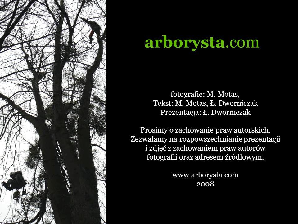 Tekst: M. Motas, Ł. Dworniczak Prezentacja: Ł. Dworniczak