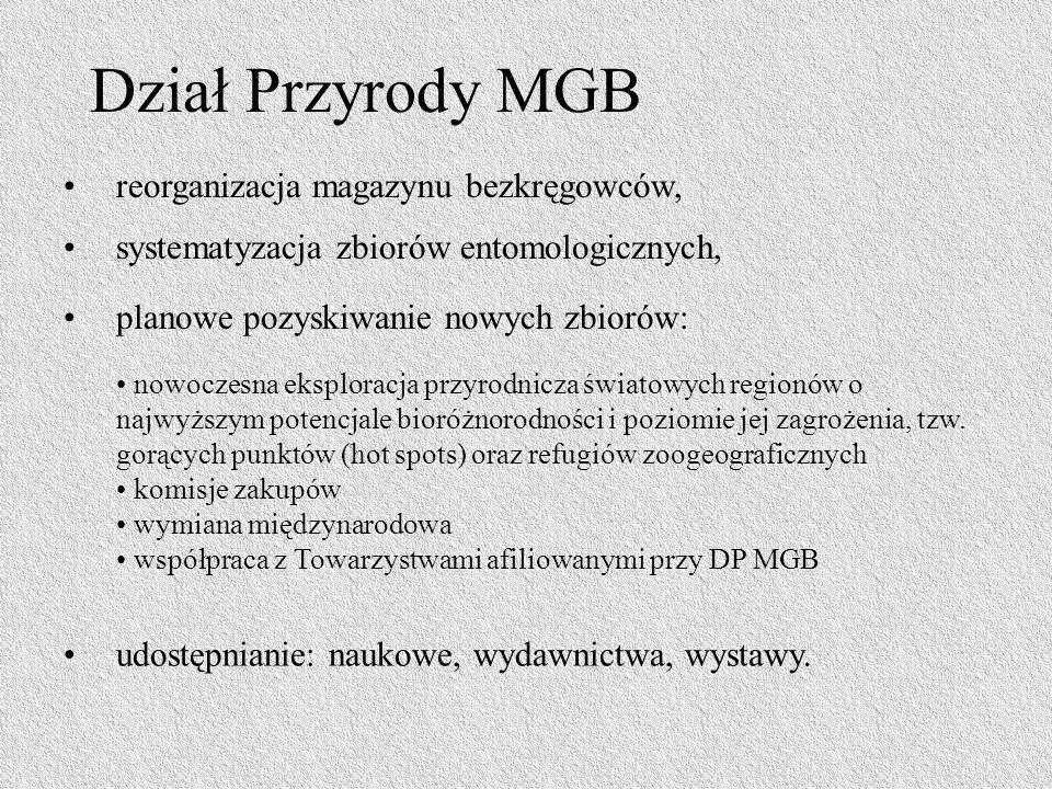 Dział Przyrody MGB reorganizacja magazynu bezkręgowców,