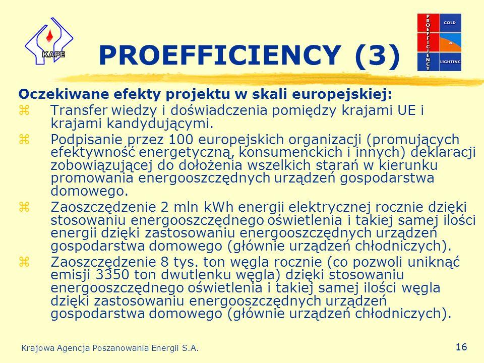 PROEFFICIENCY (3) Oczekiwane efekty projektu w skali europejskiej: