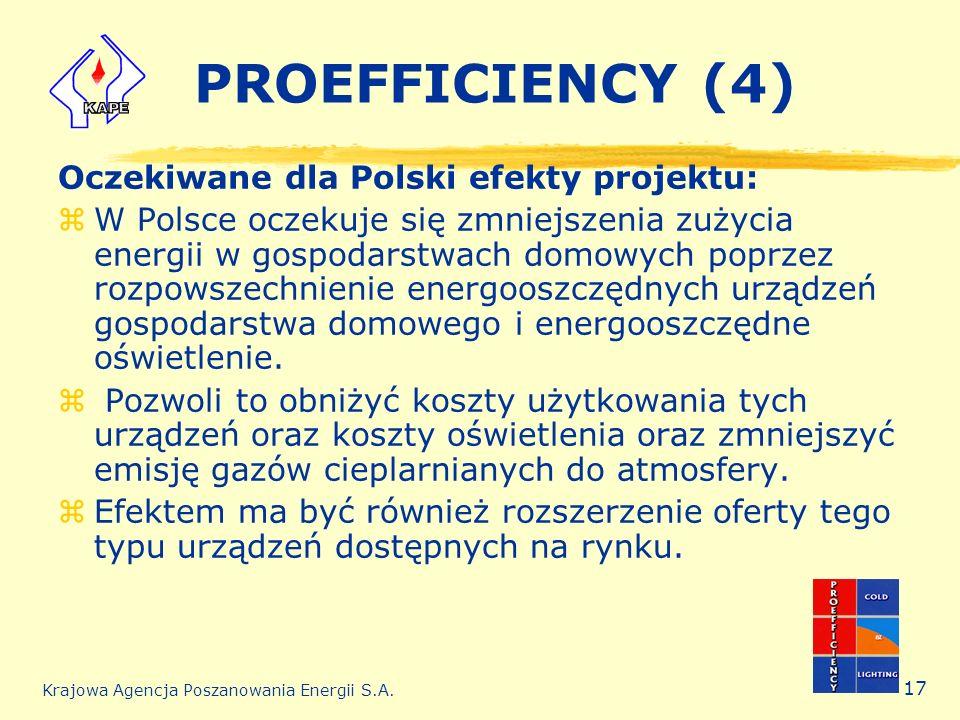 PROEFFICIENCY (4) Oczekiwane dla Polski efekty projektu: