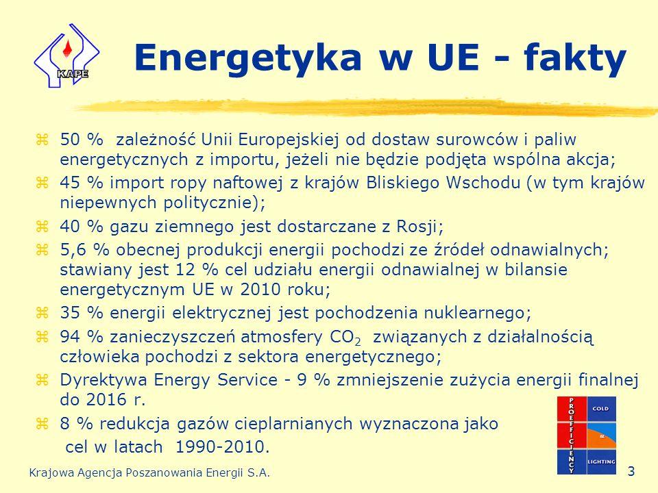 Energetyka w UE - fakty