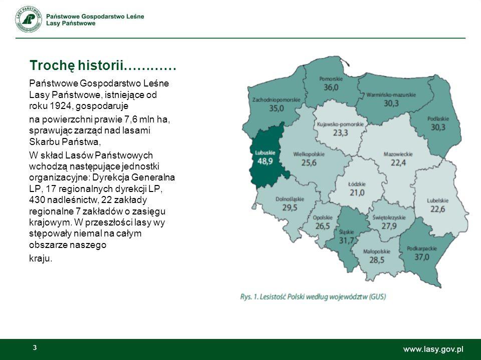 Trochę historii………… Państwowe Gospodarstwo Leśne Lasy Państwowe, istniejące od roku 1924, gospodaruje.
