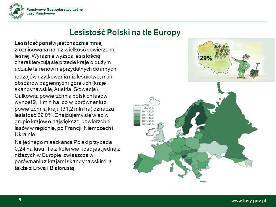 Lesistość Polski na tle Europy