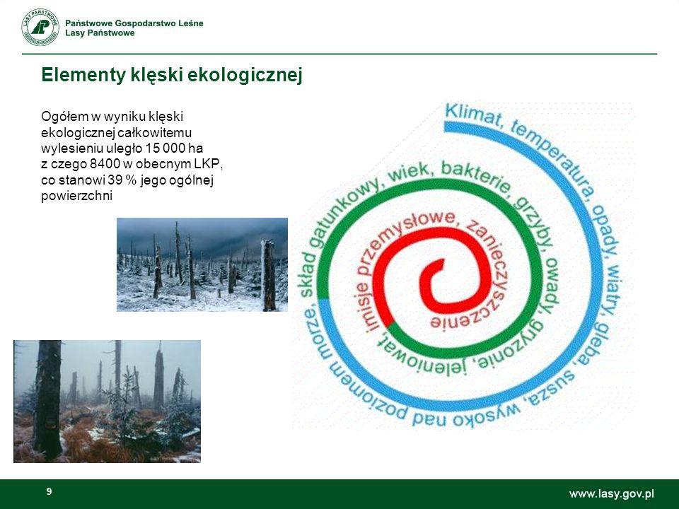 Elementy klęski ekologicznej