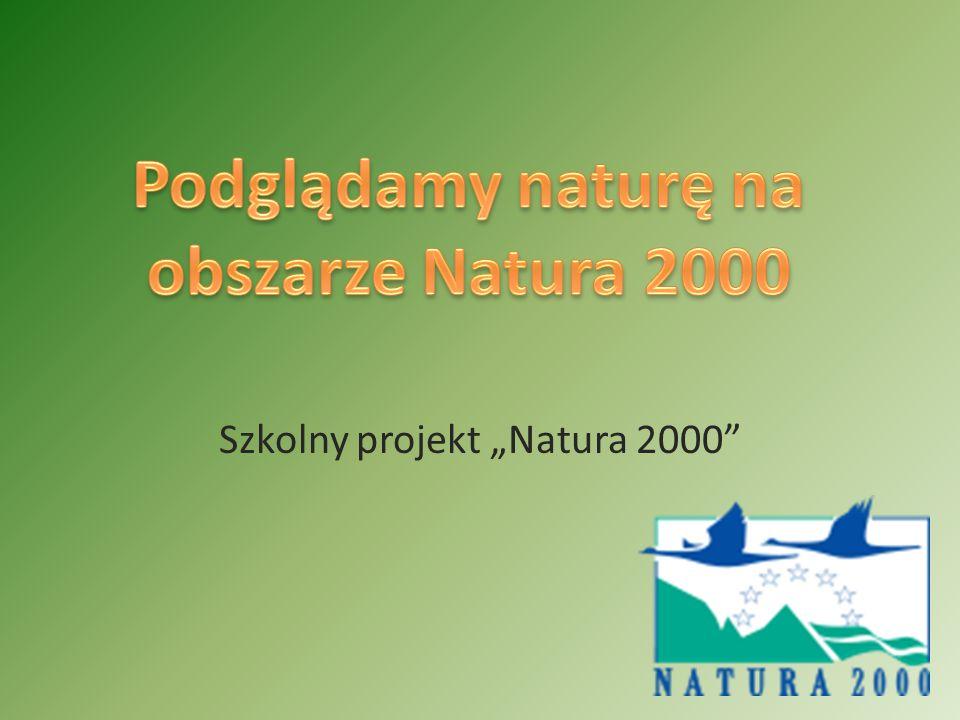 """Szkolny projekt """"Natura 2000"""