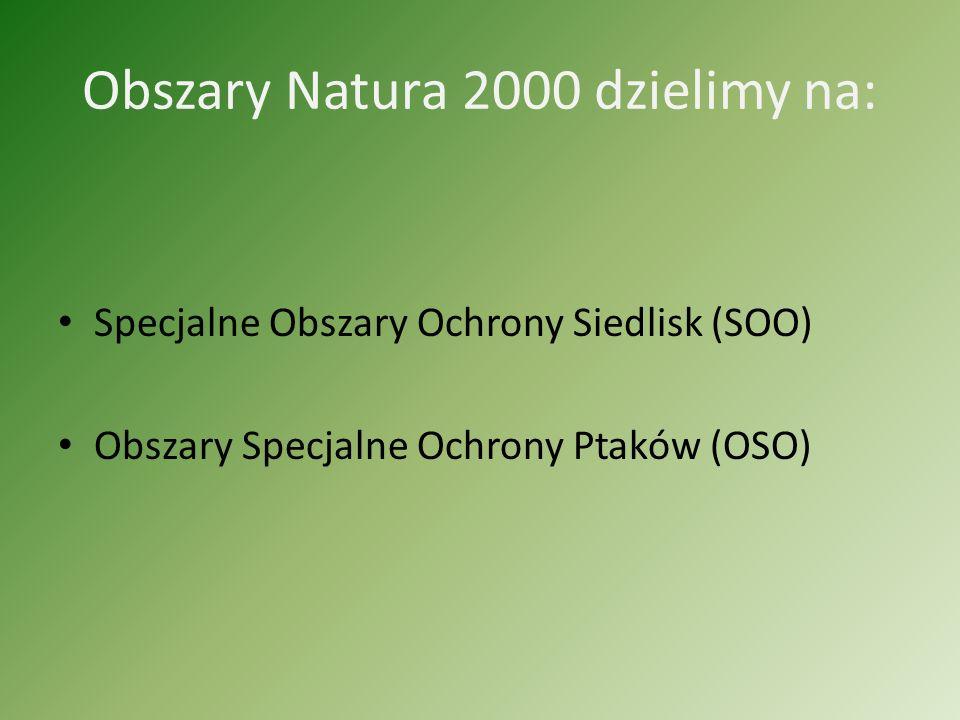 Obszary Natura 2000 dzielimy na: