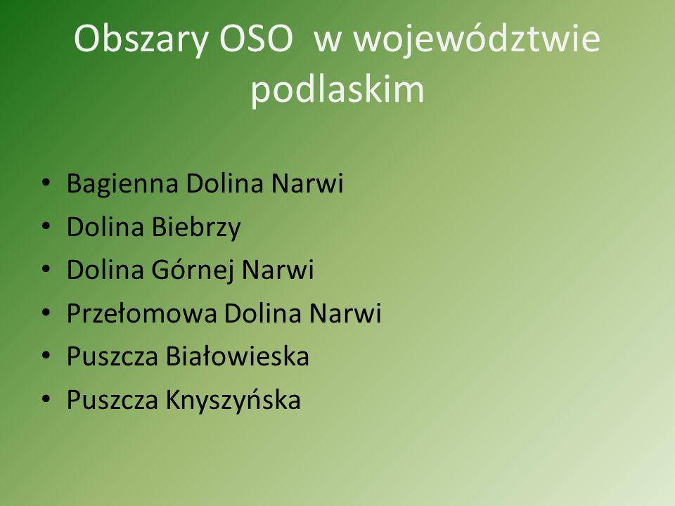 Obszary OSO w województwie podlaskim