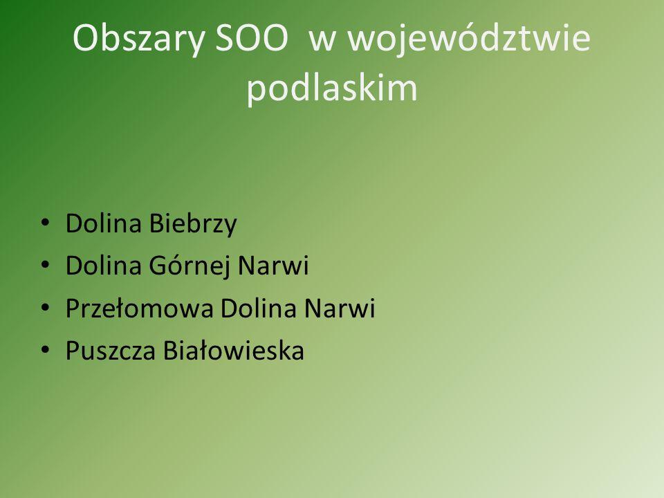 Obszary SOO w województwie podlaskim