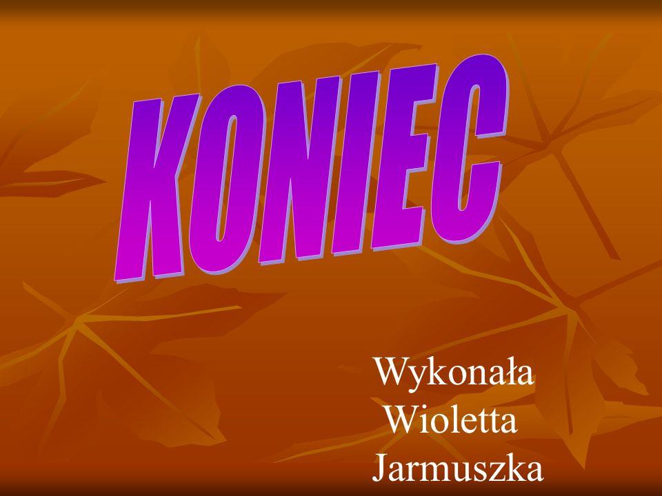 KONIEC Wykonała Wioletta Jarmuszka