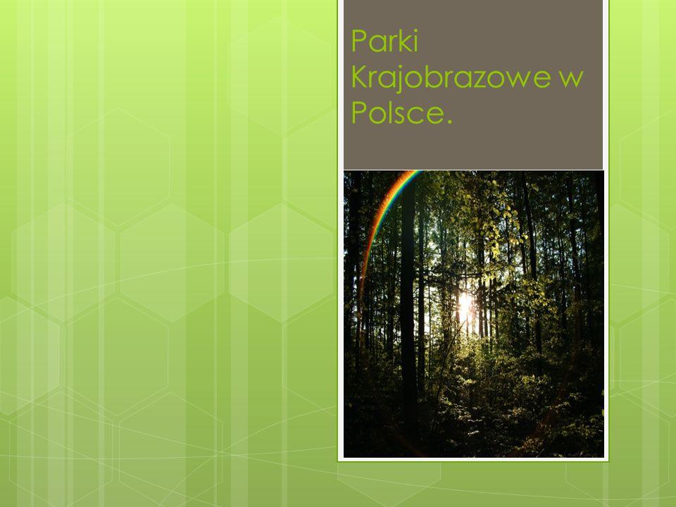 Parki Krajobrazowe w Polsce.