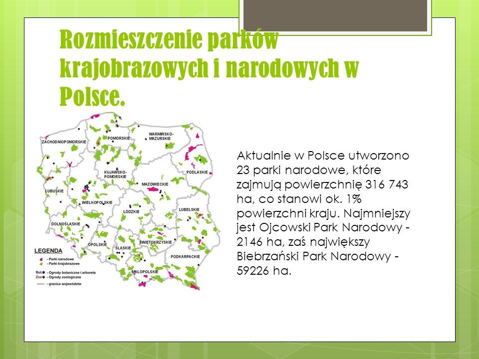 Rozmieszczenie parków krajobrazowych i narodowych w Polsce.