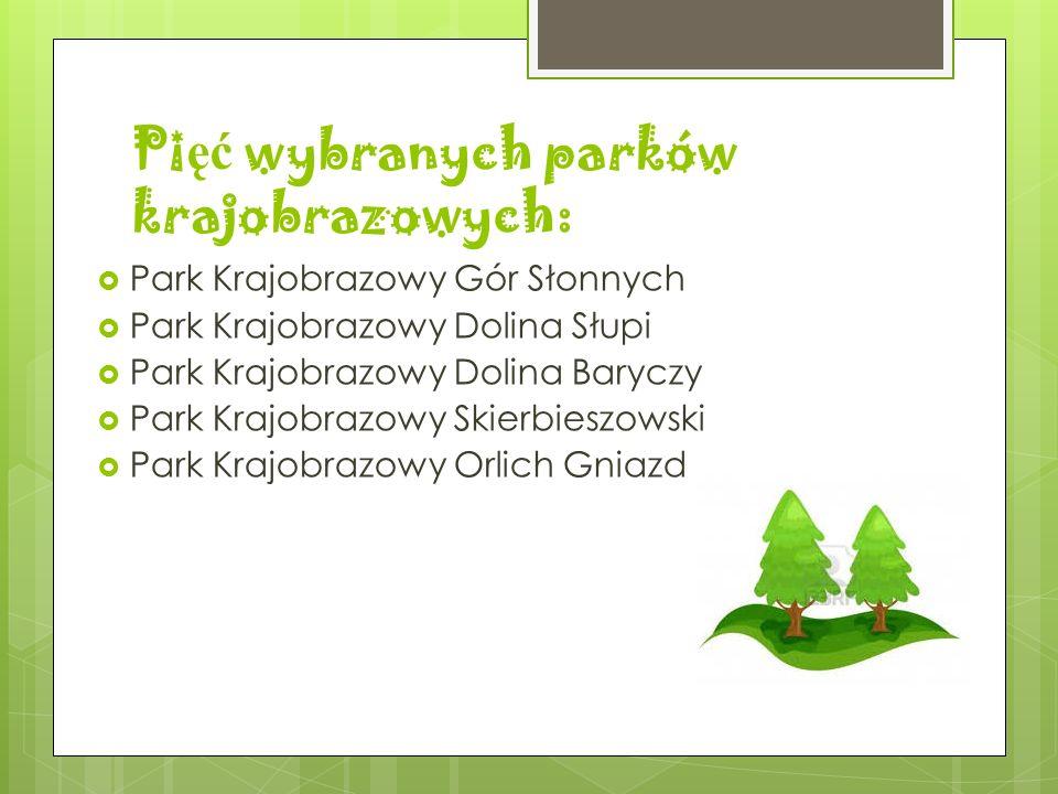 Pięć wybranych parków krajobrazowych: