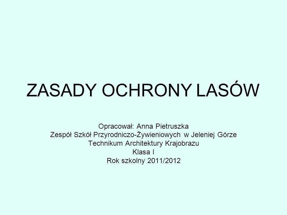 ZASADY OCHRONY LASÓW Opracował: Anna Pietruszka
