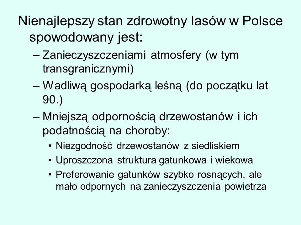 Nienajlepszy stan zdrowotny lasów w Polsce spowodowany jest: