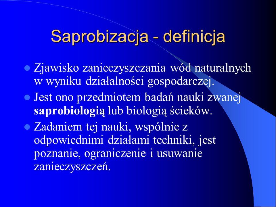 Saprobizacja - definicja