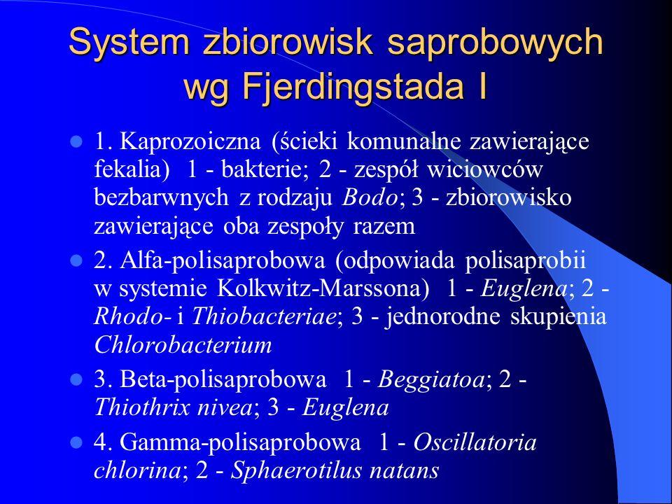 System zbiorowisk saprobowych wg Fjerdingstada I