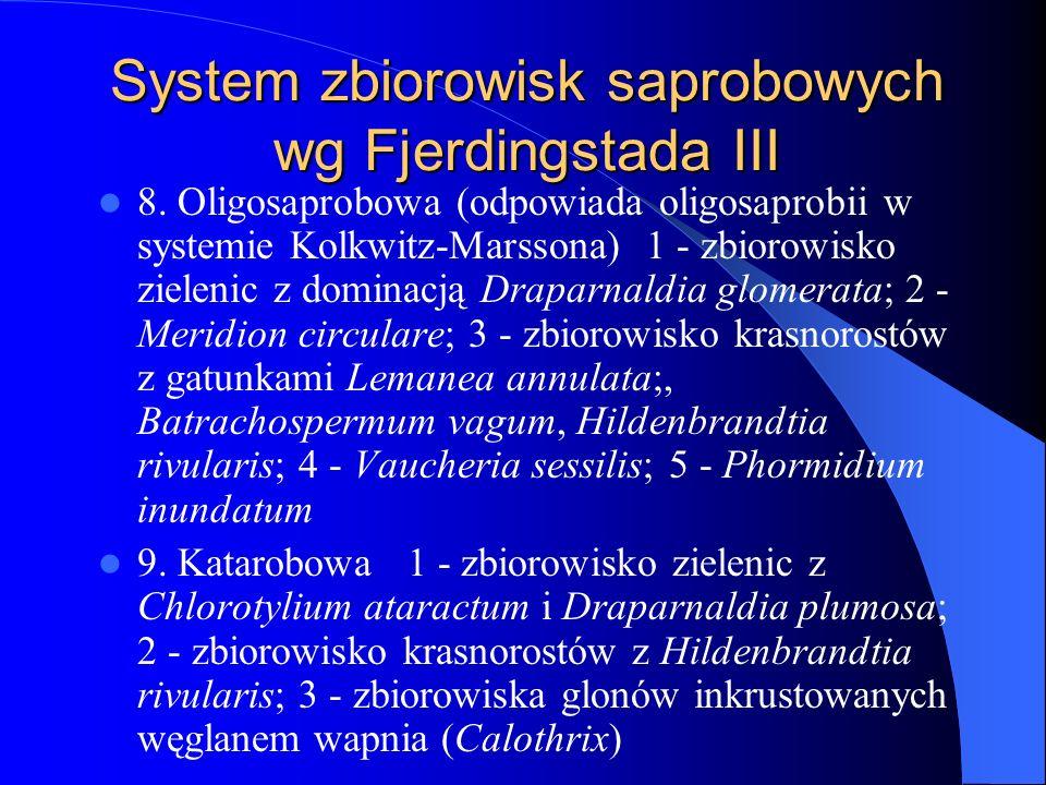 System zbiorowisk saprobowych wg Fjerdingstada III
