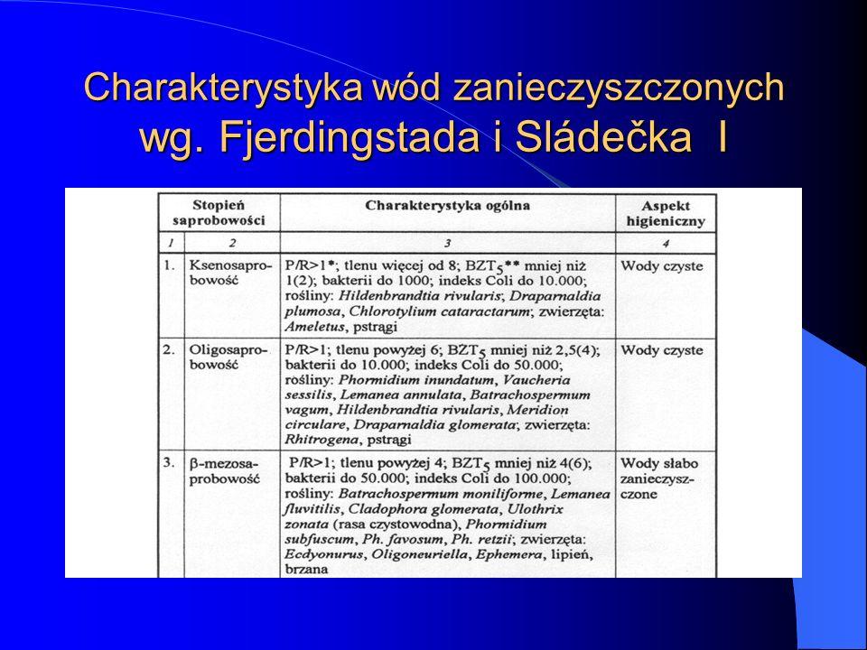 Charakterystyka wód zanieczyszczonych wg. Fjerdingstada i Sládečka I