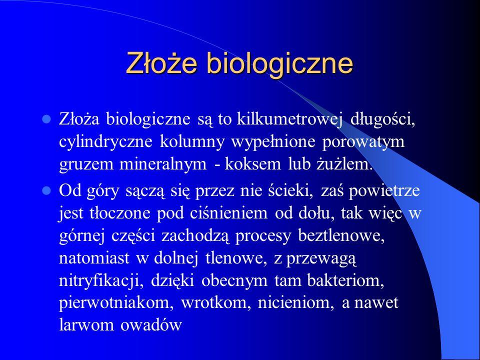 Złoże biologiczne Złoża biologiczne są to kilkumetrowej długości, cylindryczne kolumny wypełnione porowatym gruzem mineralnym - koksem lub żużlem.