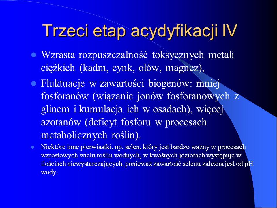 Trzeci etap acydyfikacji IV