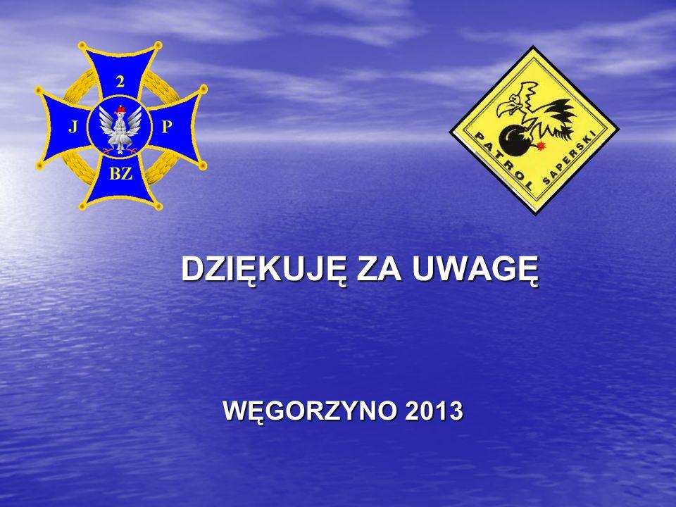 DZIĘKUJĘ ZA UWAGĘ WĘGORZYNO 2013