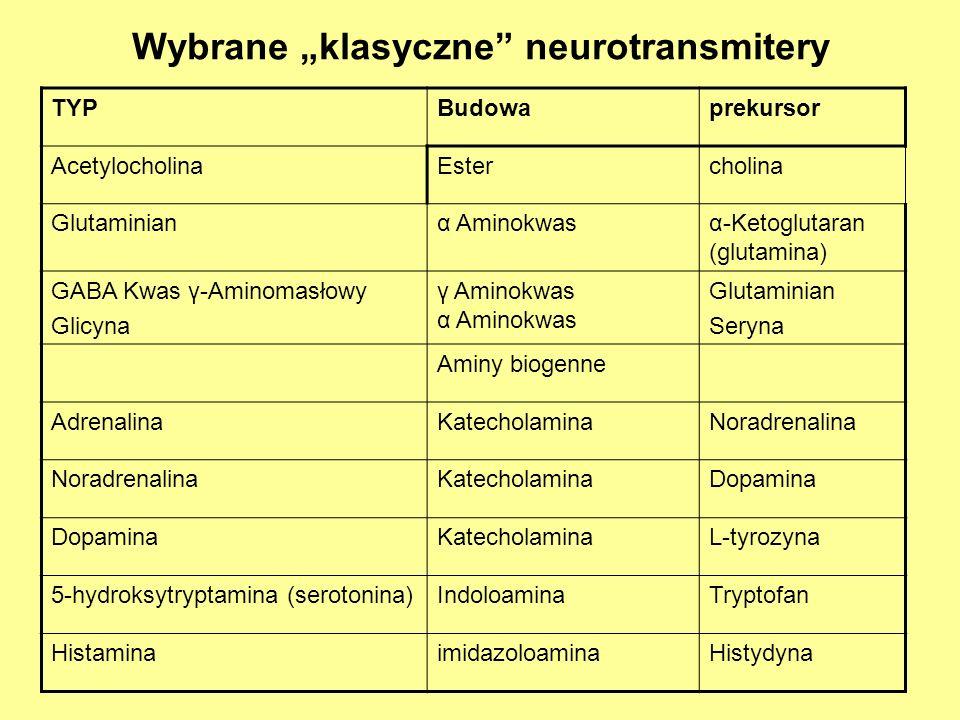 "Wybrane ""klasyczne neurotransmitery"