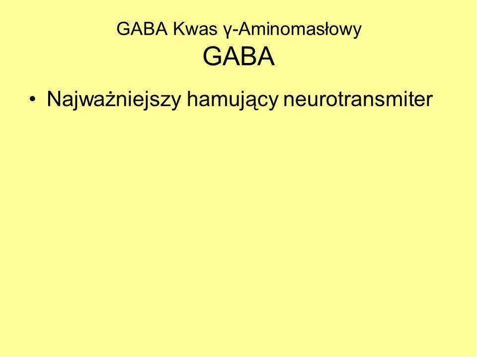 GABA Kwas γ-Aminomasłowy GABA